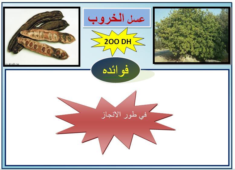 kharoub.jpg